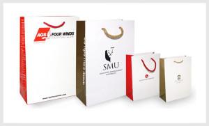in-túi-giấy-6--NamViet Pack
