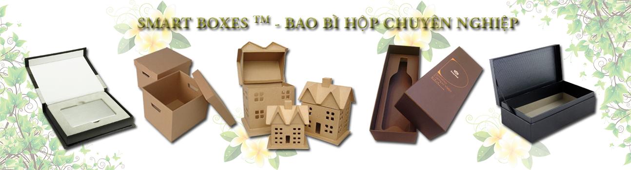Smart-Boxes-Bao-Bi-Hop-Chuyen-Nghiep