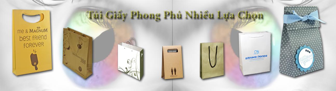 Tui-giay-Phong-Phu-Nhieu-Lua-Chon